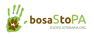 logo_zoofizjoterapia_no_background